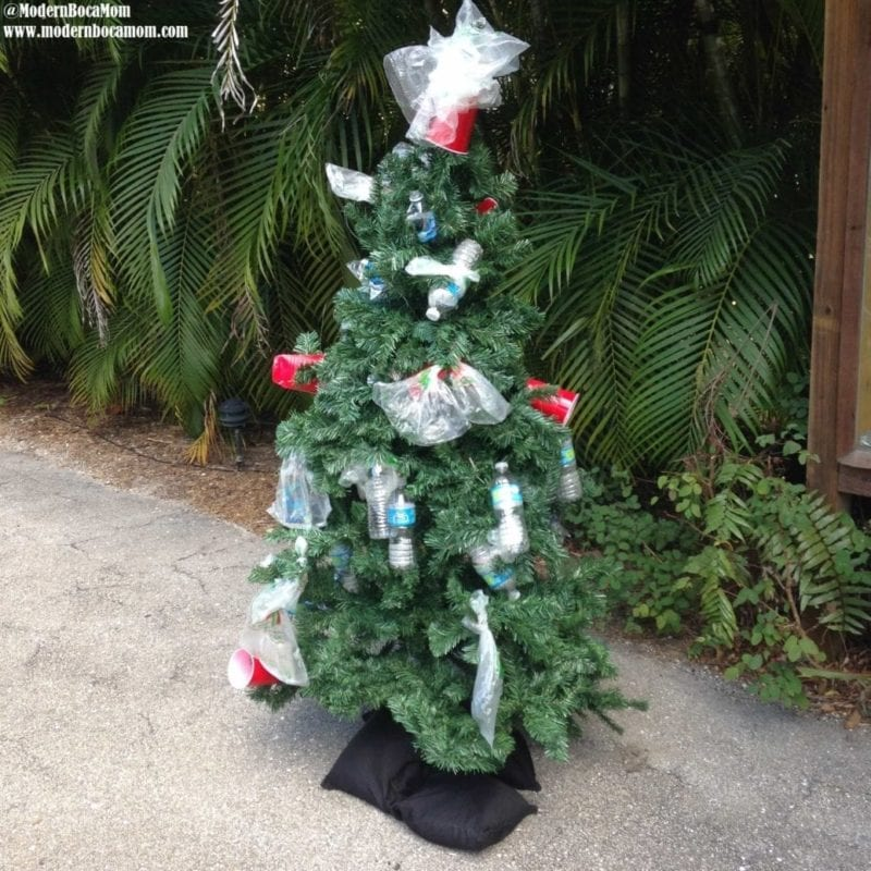 Zsa Zsa ZOO! MBMom Visits the Palm Beach Zoo - Modern Boca Mom
