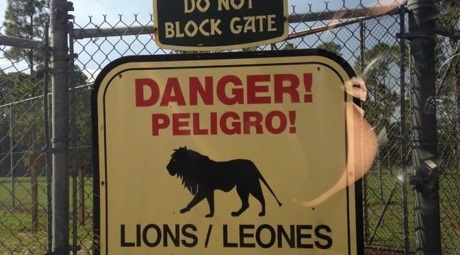 Lovin' Lion Country Safari – West Palm Beach