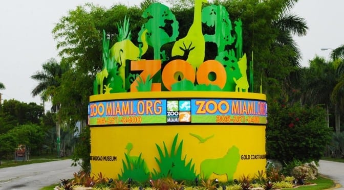 How to Survive a Day at Zoo Miami with 3 Kids