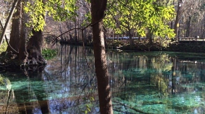 MBMtravel: Get Connected at Ginnie Springs