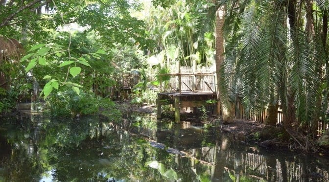 Alligator Alley Open at the Palm Beach Zoo