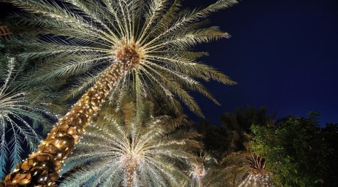 2020 South Florida Holiday Events Guide from Modern Boca Mom