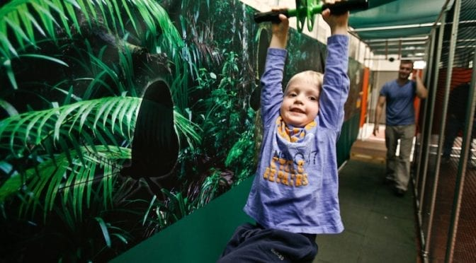 Have a Rainforest Adventure at the South Florida Science Center